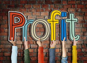 Security Of Payments Act Profit